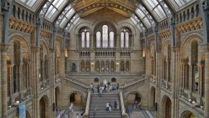 Central Hall of the Natural History Museum