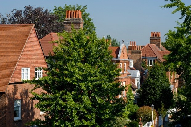 Houses and trees in Bedford park