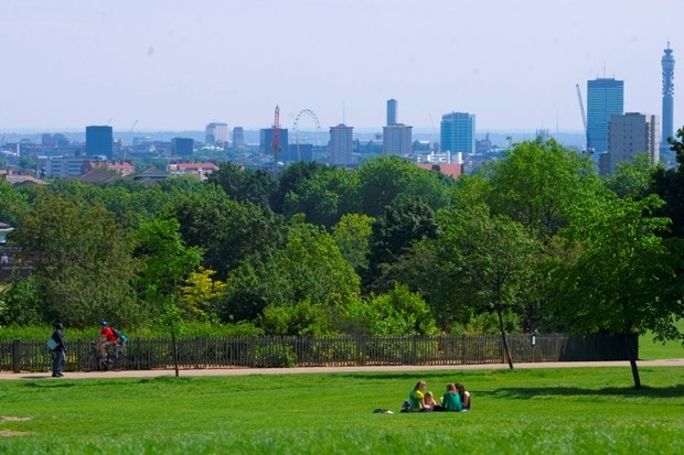 View of hampstead heath - green grass and trees with London in the background