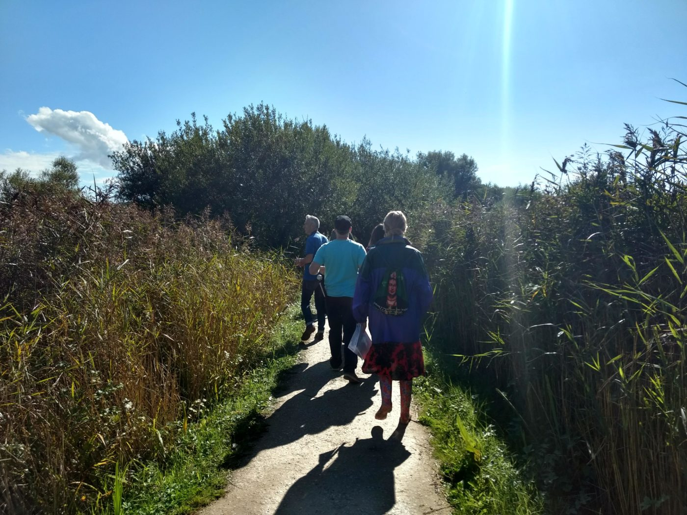 view of group walking along path