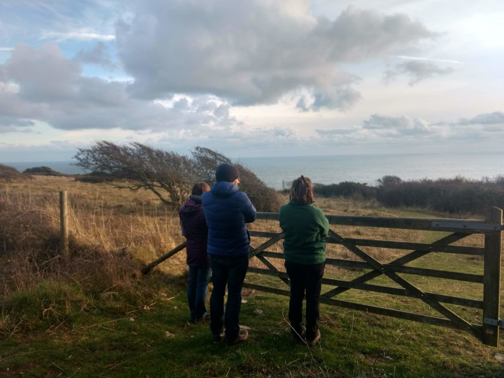 Trainees describe the view out to sea